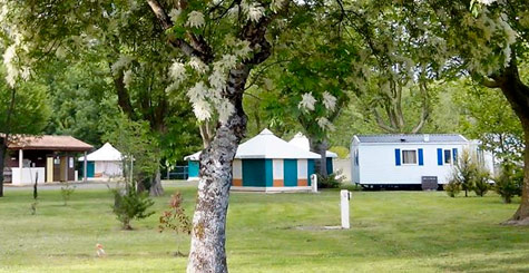 camping la taillee charente maritime